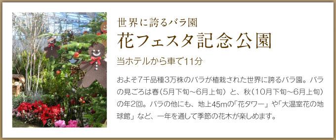 世界に誇るバラ園 花フェスタ記念公園